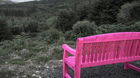 Bench_PINK_lord2_4800x960