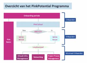 PinkPotential Programma